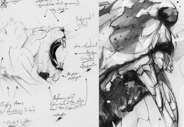 Lion Drawing