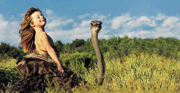 Tippi and Ostrich