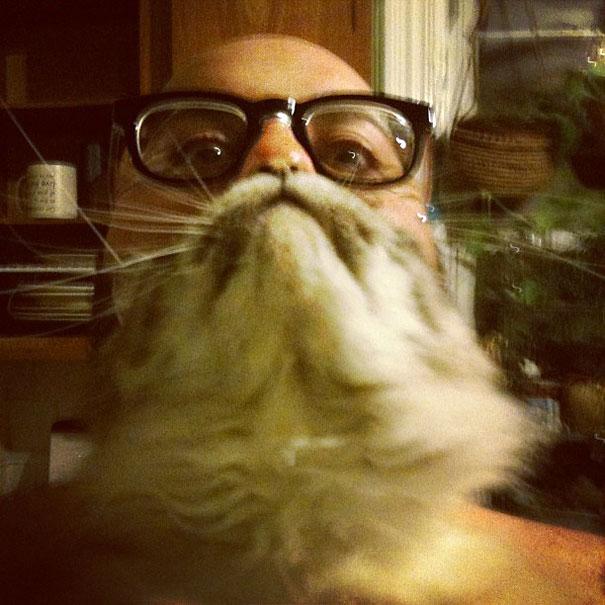 Cat Beard 5