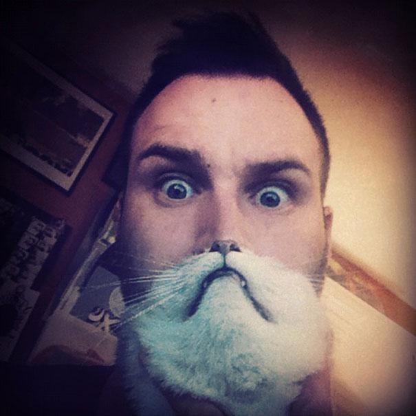 Cat Beard 7