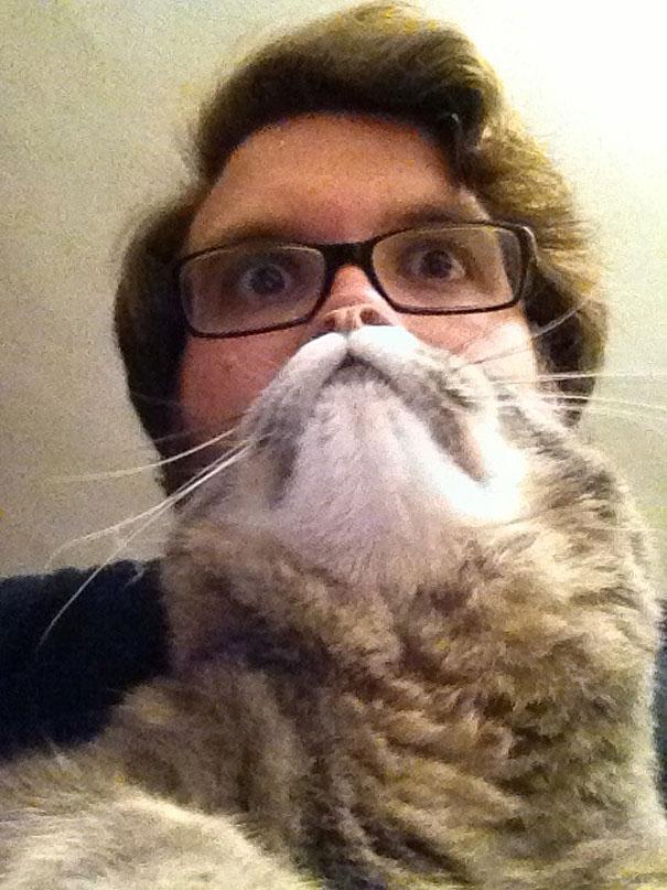 Cat Beard 9