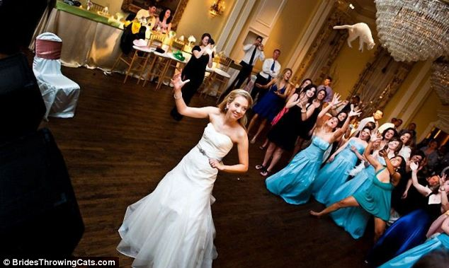 bride-throwing-cats-1