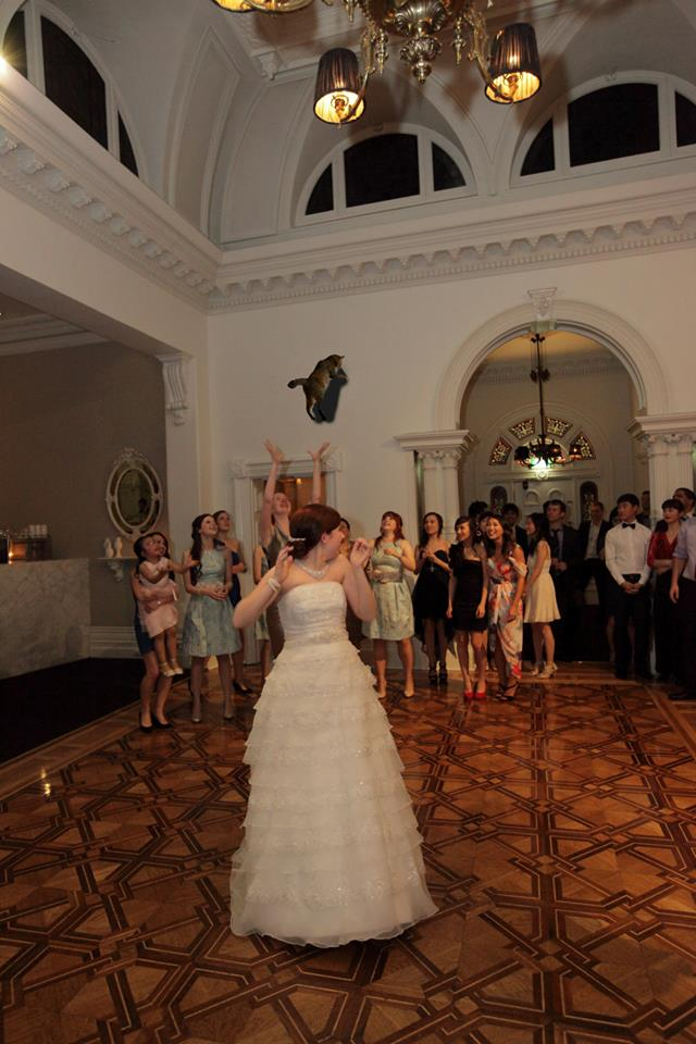 bride-throwing-cats-13