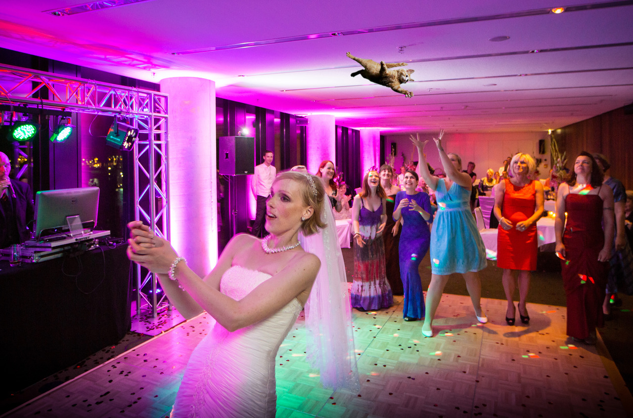 bride-throwing-cats-15