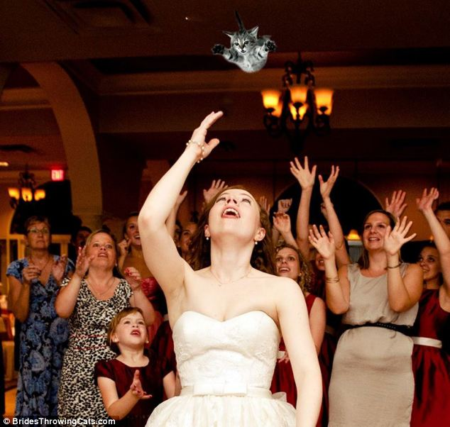 bride-throwing-cats-2