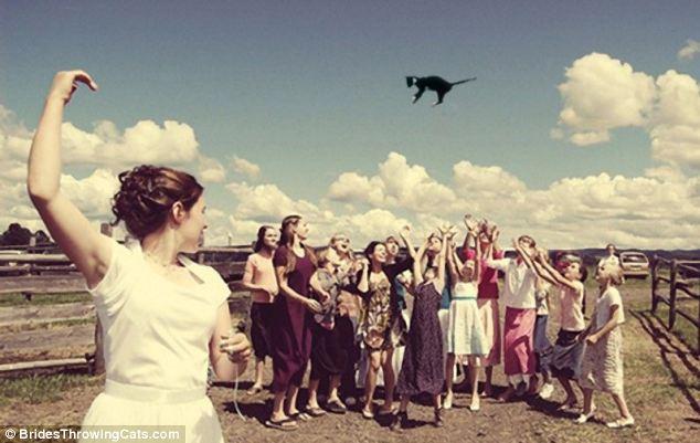 bride-throwing-cats-4