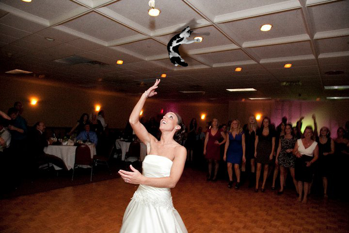 bride-throwing-cats-5