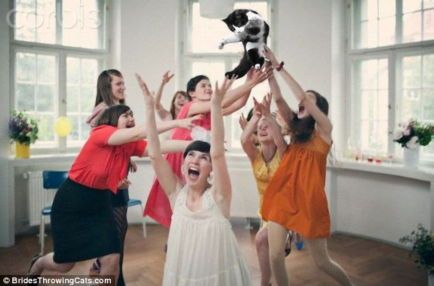 bride-throwing-cats-6