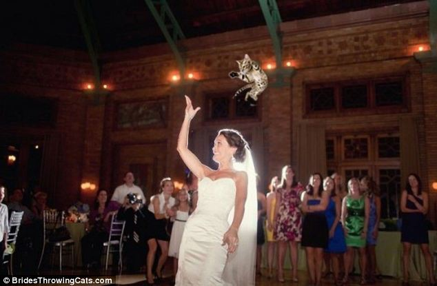 bride-throwing-cats-7