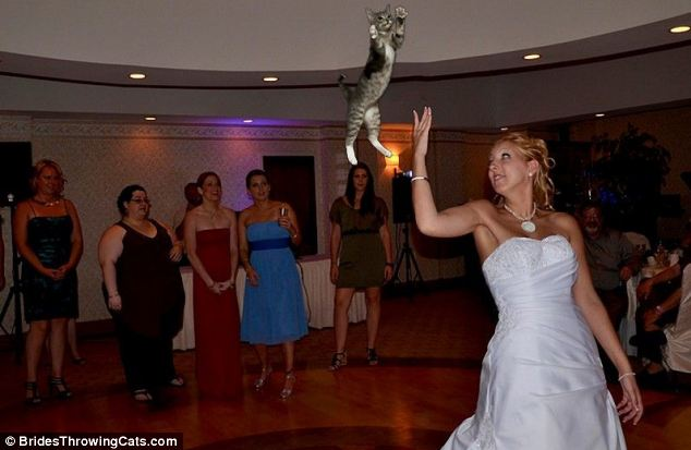 bride-throwing-cats-8