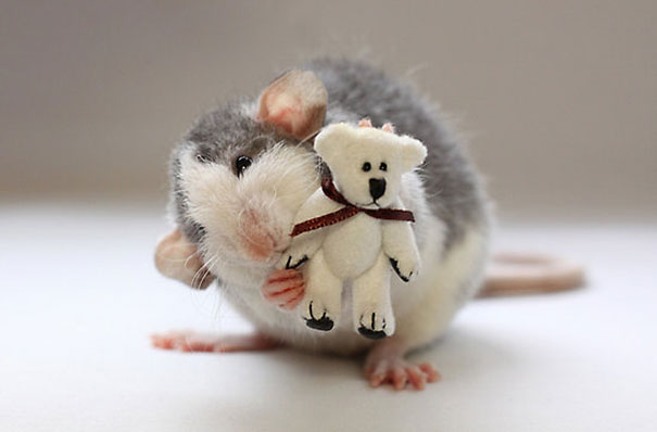 rats-and-teddy-bears-14