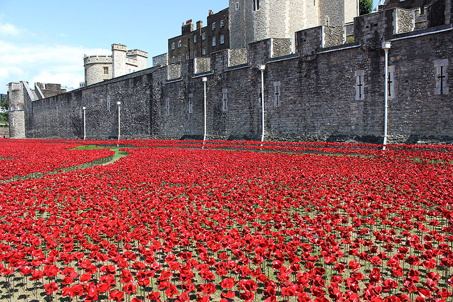 ceramic-poppies-installation-london-tower-4