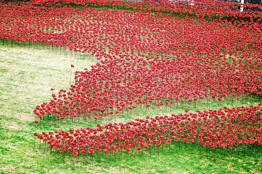 ceramic-poppies-installation-london-tower-7