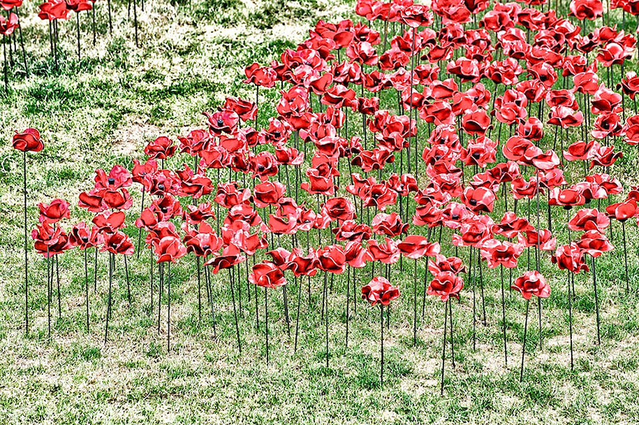 ceramic-poppies-installation-london-tower-9