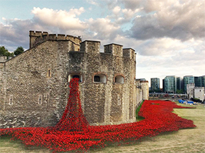 888,246 Ceramic Poppies Planted – Tower of London